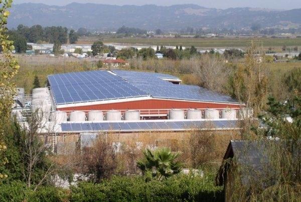 SolarCraft Alaniz Marketing